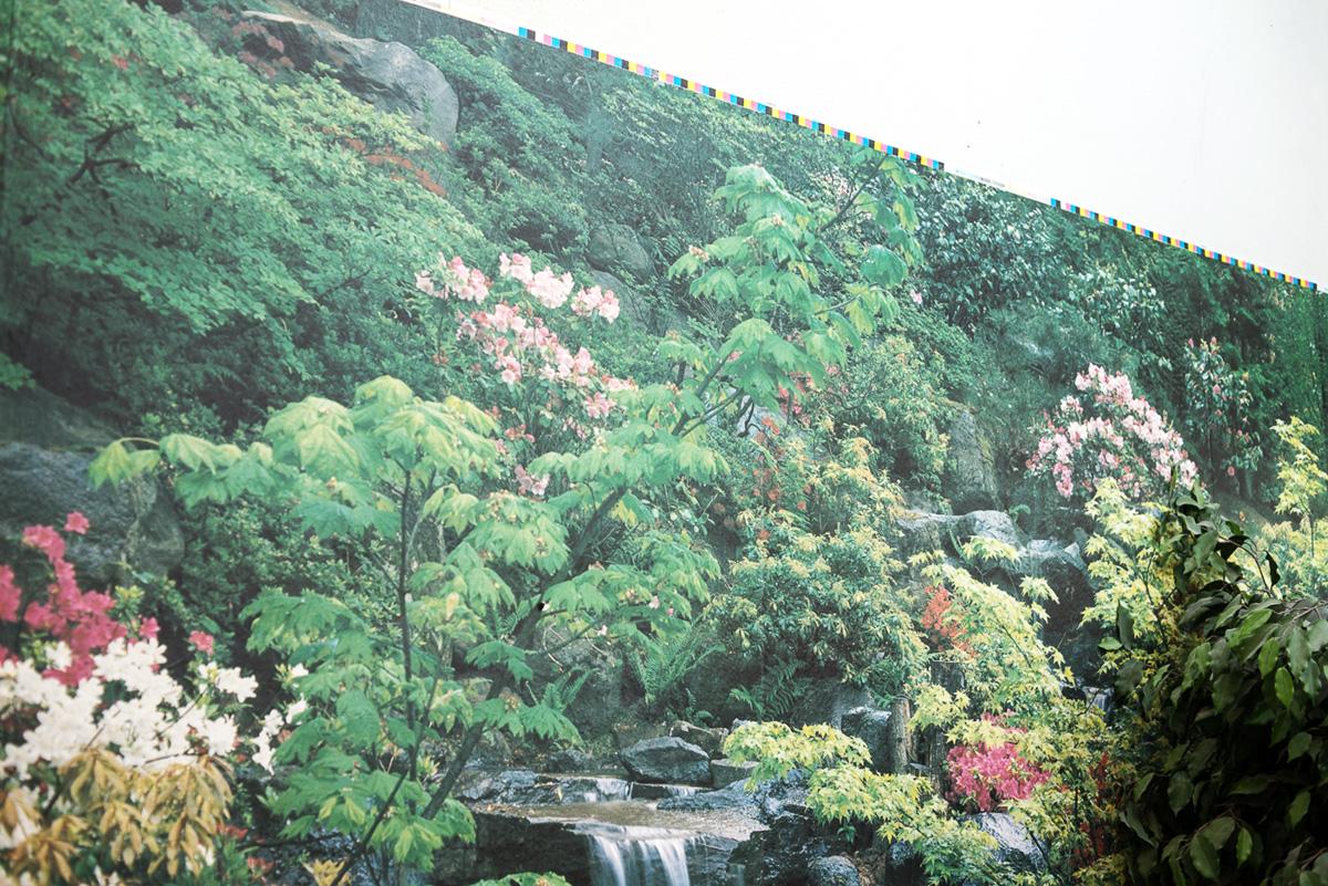 http://www.carlbeanlarson.com/files/gimgs/39_cbl-landscape-print-forest-1200px.jpg